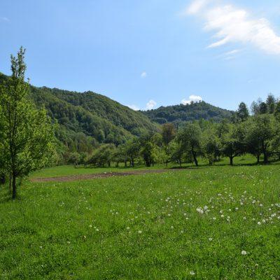 Paysage autour du monastère Barsana, dans le Judet de Maramures.