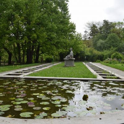 The botanical garden of Cluj.
