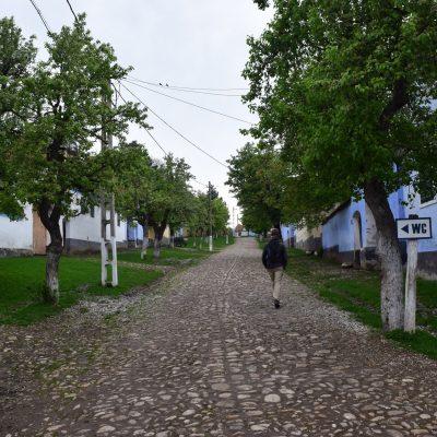 Sur le chemin vers l'église, dans Viscri.