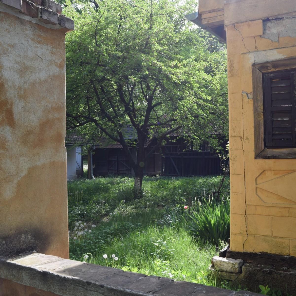 Le jardin cache d'une maison de la region du Banat