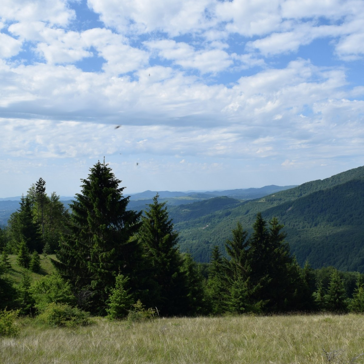 Trek in Prahova county.