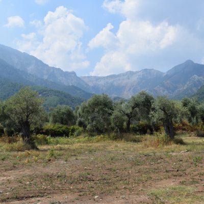 Vue des montagnes de Skala Potamia a Thassos