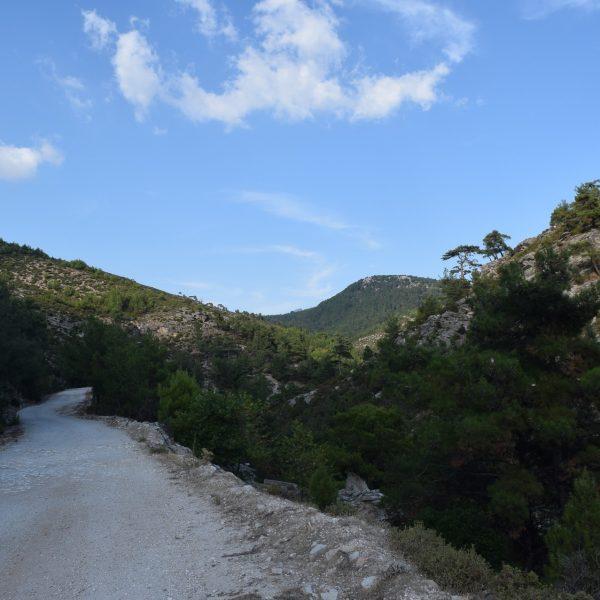 chemin vers le lac de Maries, a Thassos
