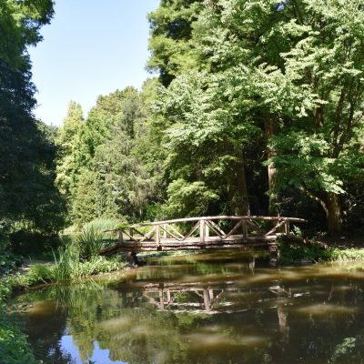 Jardin botanique de Simeria.