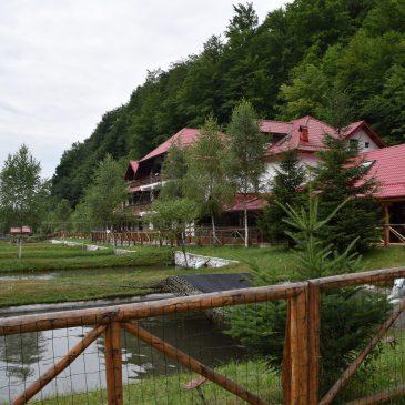 Pastravaria Bratioara, un hébergement caché du département Arges