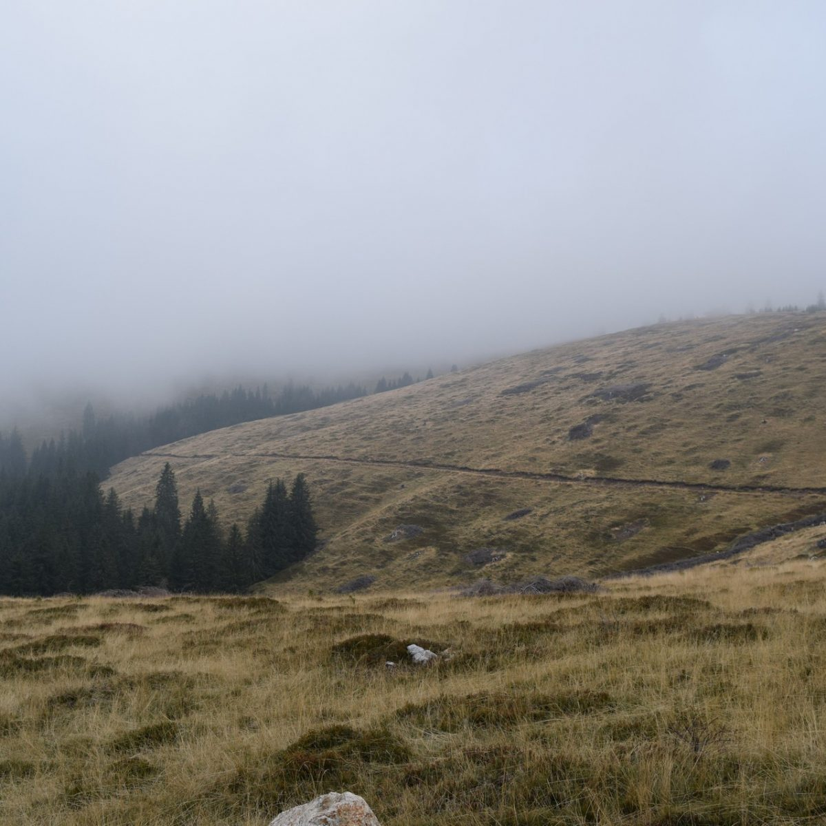 """Haut dans la montagne, à la recherche du monastère """"Sfantana Manastrire"""", en Valcea"""