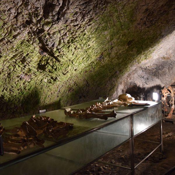 La grotte des femmes, Pestera Muierilor. En Valcea