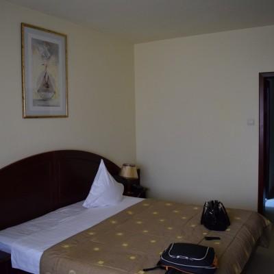Delta Hotel, of Tulcea.