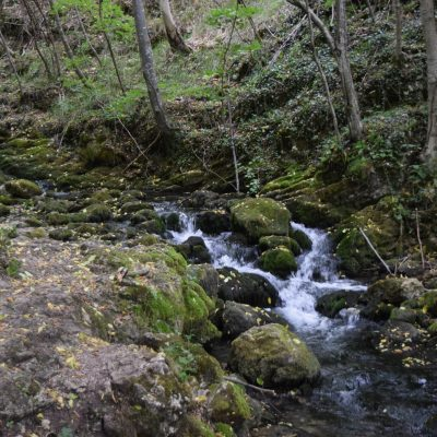 Cascade Bigar