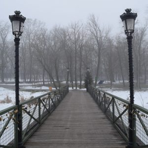 Comana park during winter.