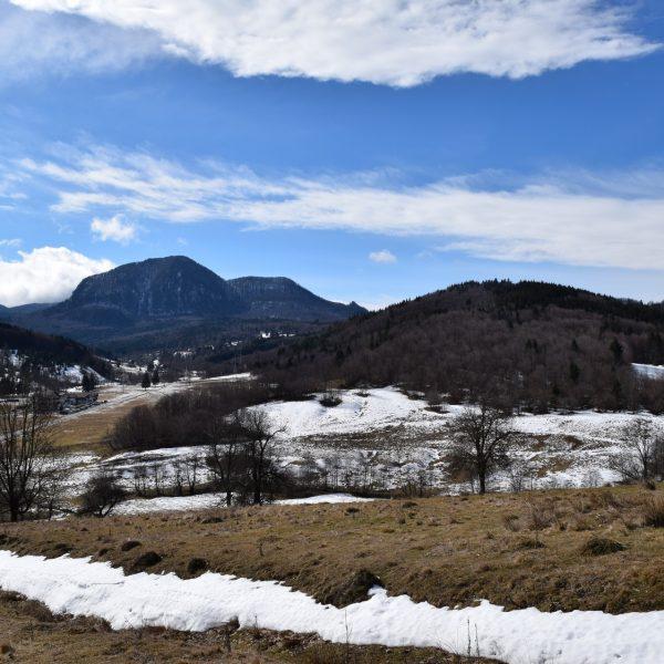 The landscape surrounding Pastel Chalet.