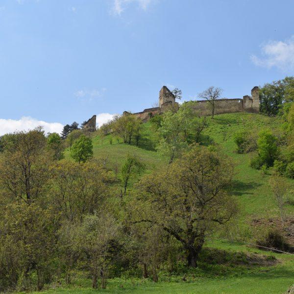 The citadel of Saschiz village.