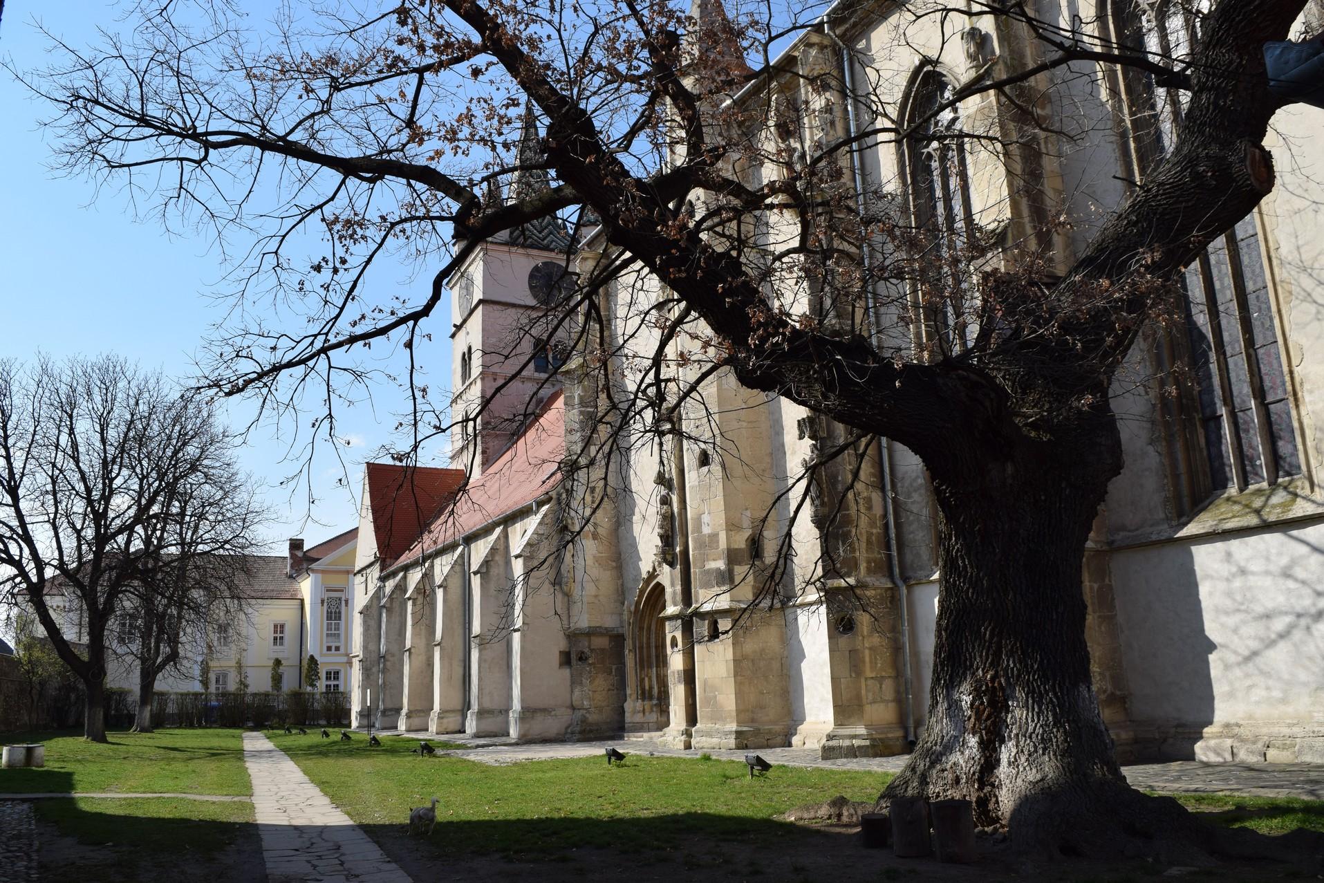 Voyage en Roumanie Eglise fortifiee Sebes