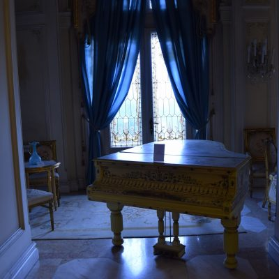 Cotroceni palace. The flowers room, loved by Queen Marie.