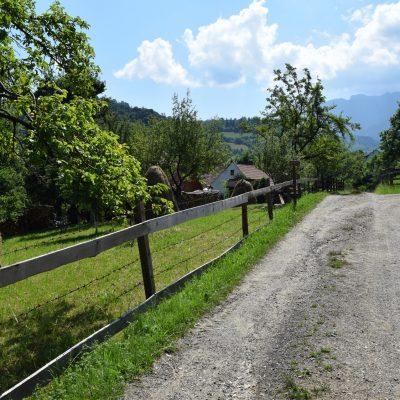 Sur les hauteurs de la colline de Conacul Bratescu.