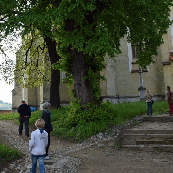 L'église fortifiée de Biertan. Sa cour intérieure.