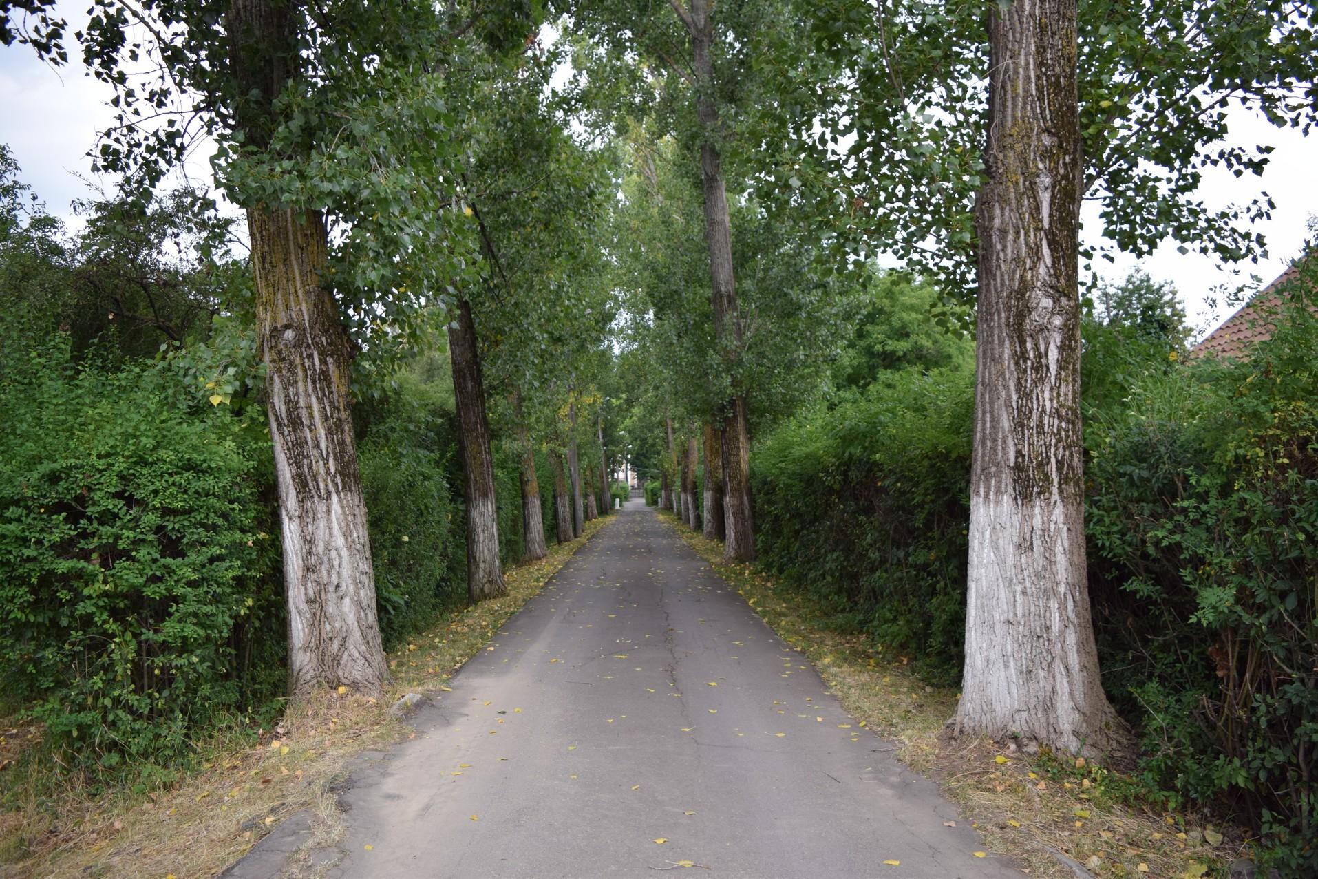 palais Szentkereszty