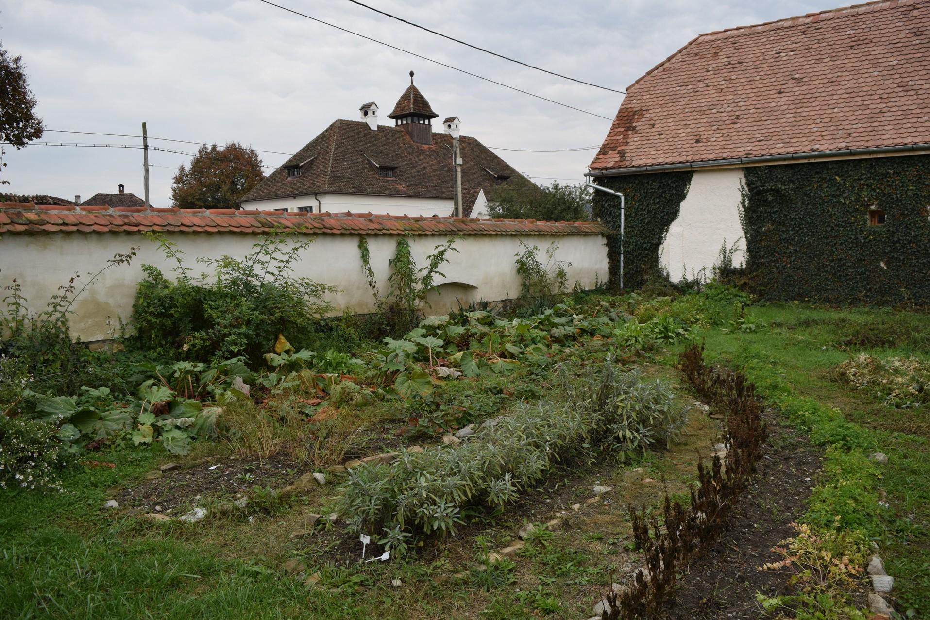 jardin cincsor