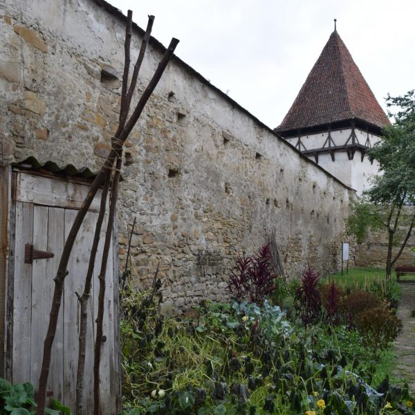 the vegetable garden of the fortified church in front of Cincsor guesthouse.