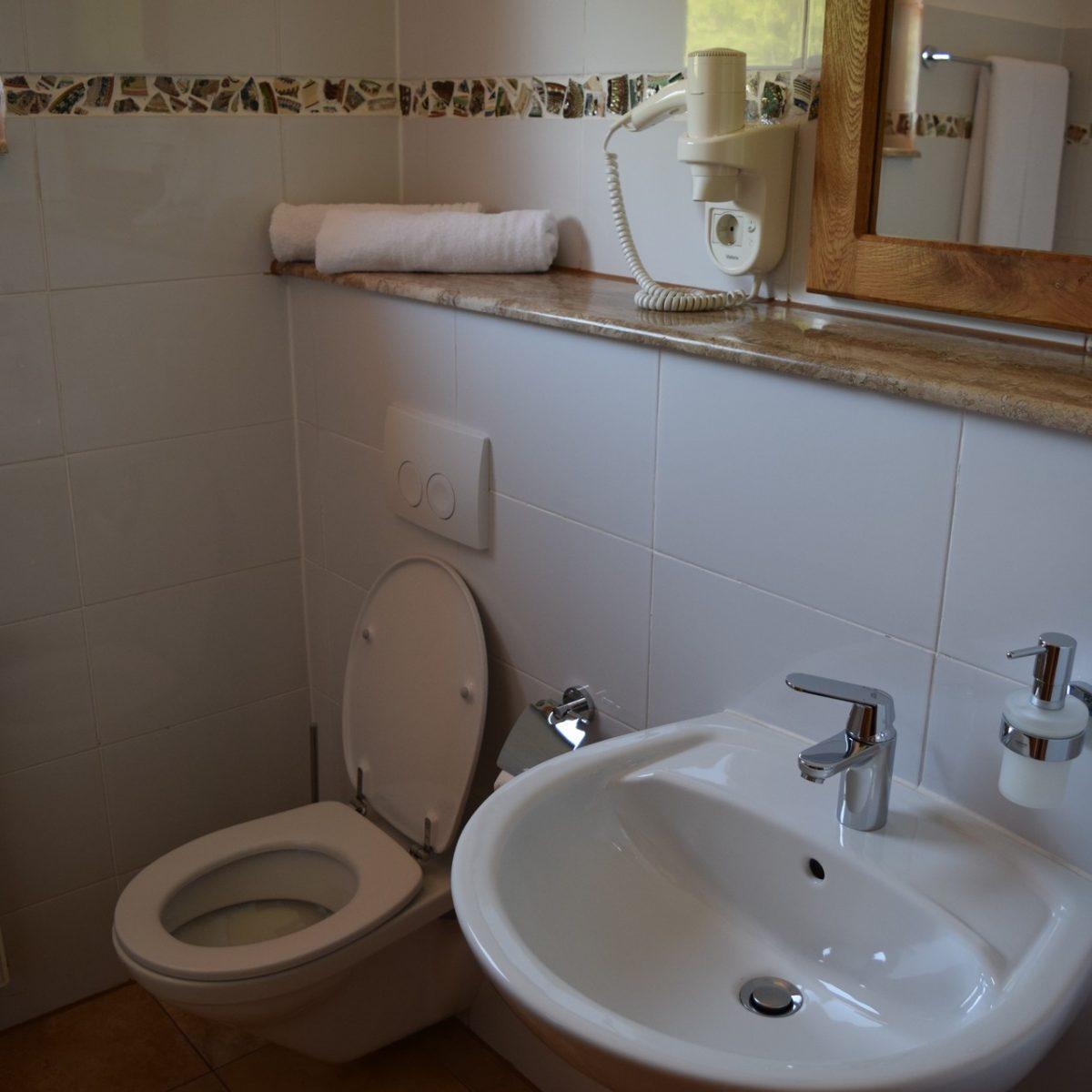La salle de bain de Hanul Vatra.