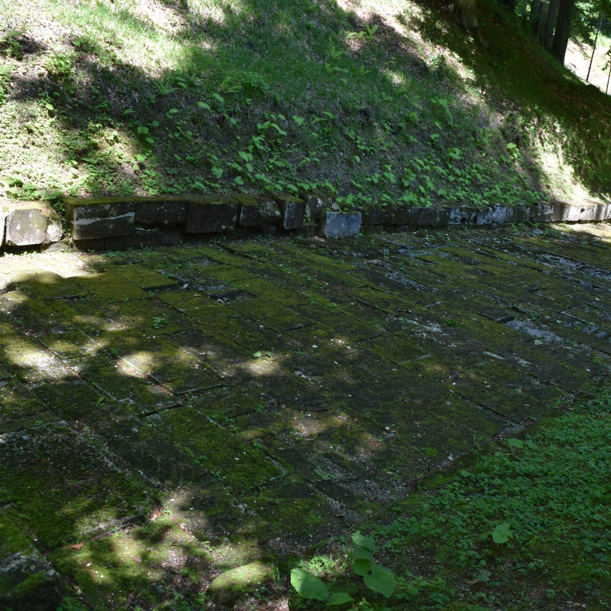 La route pavee de Sarmizegetusa Regia.