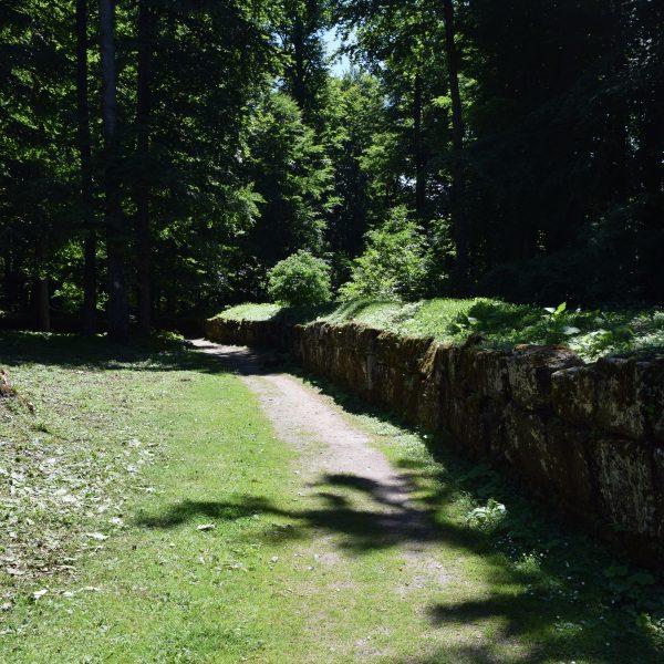 La forteresse de Sarmizegetusa Regia.